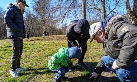 Forældreguide: Udforsk naturen med dit barn