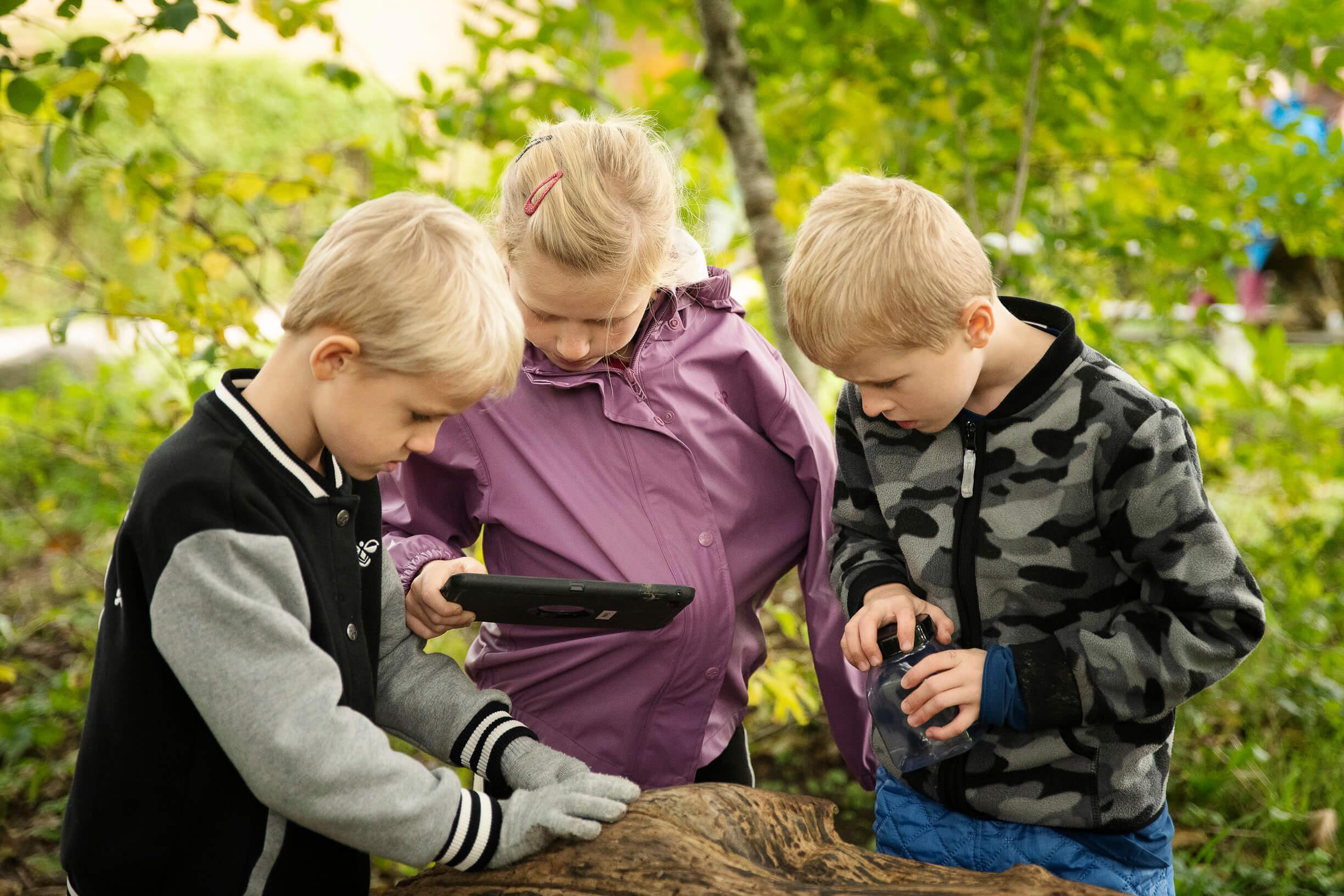 tre børn kigger på ipad i skov